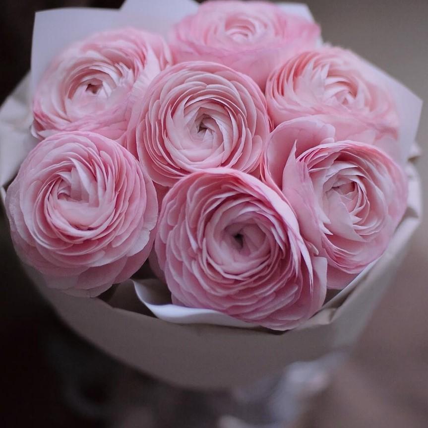 База москве, букет из розового ранункулюс купить